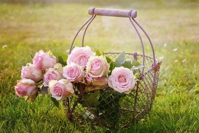 kovový drátěný košík s růžemi